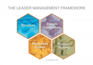 LeaderManagementFramework
